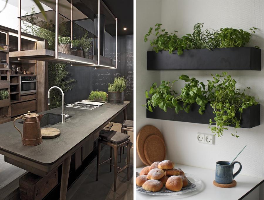 Angolo green in casa | Il mondo di Megh